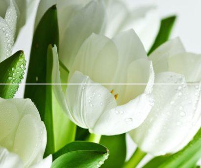 Керамическая плитка Arco Verde Tulipan Панно (из 2-х пл.) 50x60