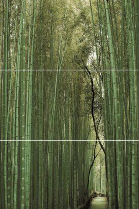 Керамическая плитка Bambu   Панно (из 3-х плиток ) D E F 50х75
