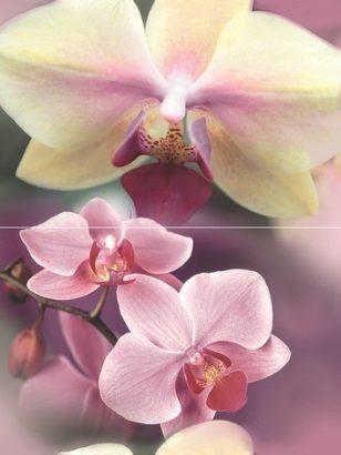 Керамическая плитка Blossom Панно P2D183 40х30 (из 2-х пл.)