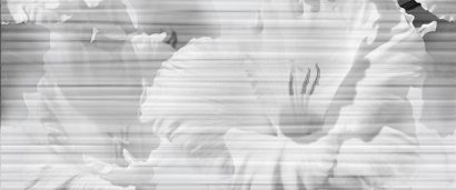 Керамическая плитка Celia white Панно 01 500х600