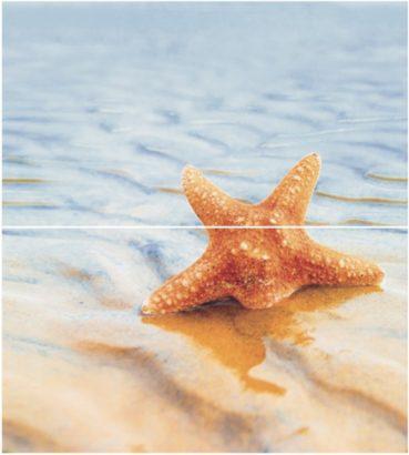 Керамическая плитка Dec Starfish 1 Panno (панно из 2-х шт) КПН16Starfish1 50х45