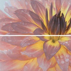 Керамическая плитка Искья Панно Цветы STG A444 2x 12093R 50х75 (из 2-х плиток)