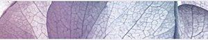 Керамическая плитка Рефлекс Ультра Бордюр БД40РУ605 36