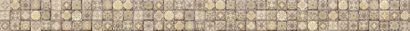 Керамическая плитка Royal Garden бордюр многоцветный (RG1C451DT) 4