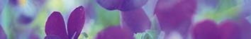Керамическая плитка Sweet home B300D241 Бордюр 30х4