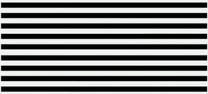 Керамическая плитка Evolution Вставка  линии черно-белый (EV2G443) 20×44