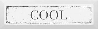 Керамическая плитка Cool Декор чёрный NT B28 2882 8