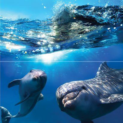 Керамическая плитка Dolphins Панно 50×50