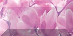 Керамическая плитка Magnolia Бордюр рельефный br1020D297-2 20×10