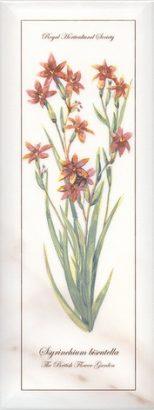 Керамическая плитка Ноттингем Декор Цветы грань NT A88 15005 15×40