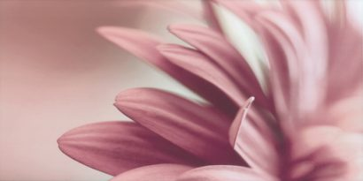Керамическая плитка Sorenta bianco durst kwiaty A Декор 30×60