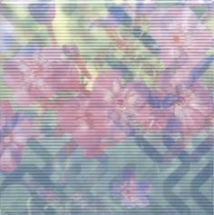 Керамическая плитка Весеннее шоу Декор Флоксы NT A99 5155 20×20
